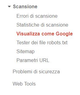 """Indicizzazione tramite la funzione """"Visualizza come Google"""""""